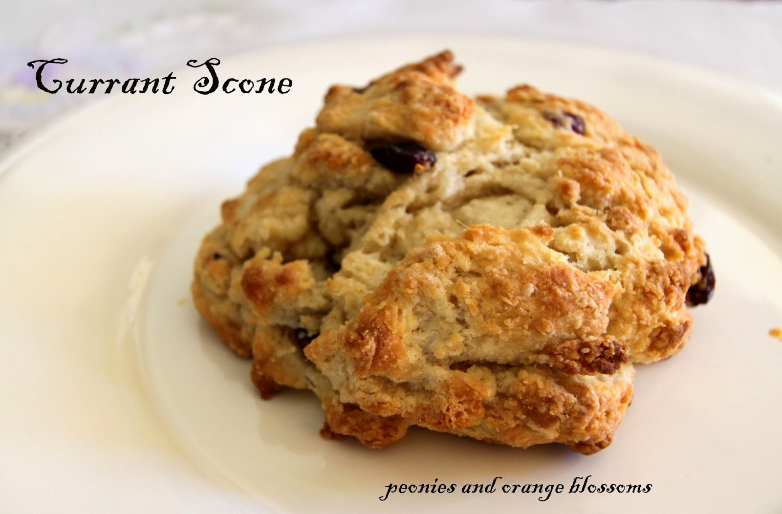Buttermilk Scones with Currants Recipe - Petite Haus