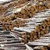 TNI - Polri Terlibat Dalam Ilegal Logging Di Papua