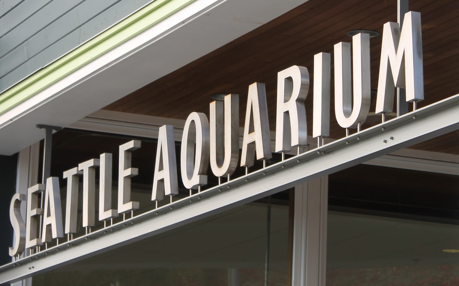 Play For a Day: Just Okay: Seattle Aquarium