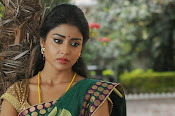 Shriya Saran latest Photos in saree-thumbnail-2