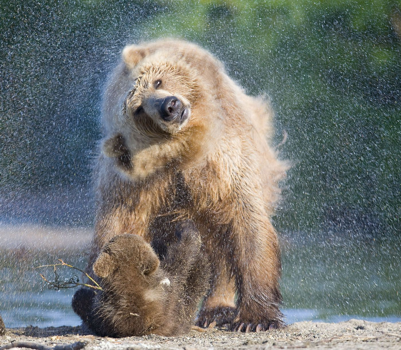 Shower from Mom