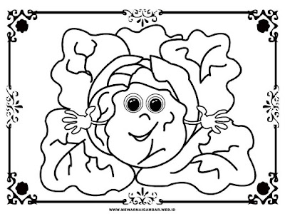 gambar sayur kol untuk diwarnai anak tk
