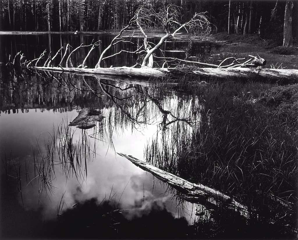 The Photography Files Ansel Adams