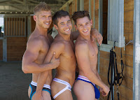 brandon, colby and sean for andrew christian