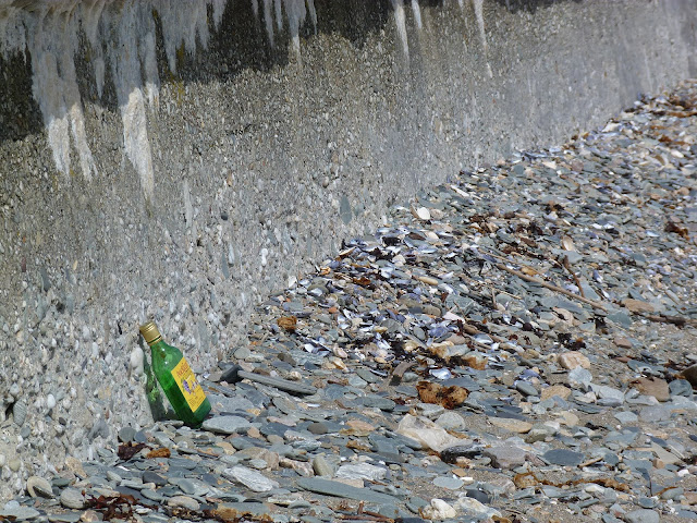Buckfast on the beach
