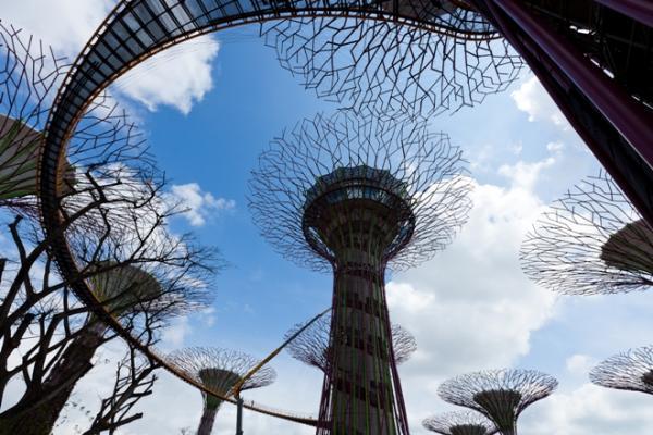 جنةة الأرض الحديقة السآحرة بسنغآفورة