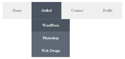 Dropdown Menu Css