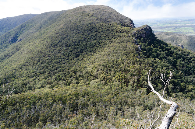 descent from mount william to boundary gap