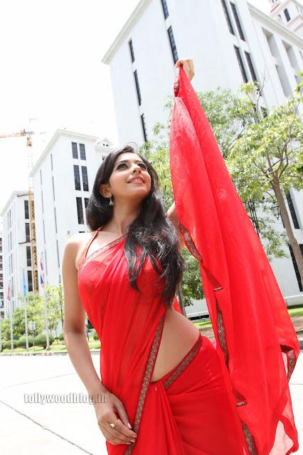 Rakul Preet  pics in saree 009.jpg