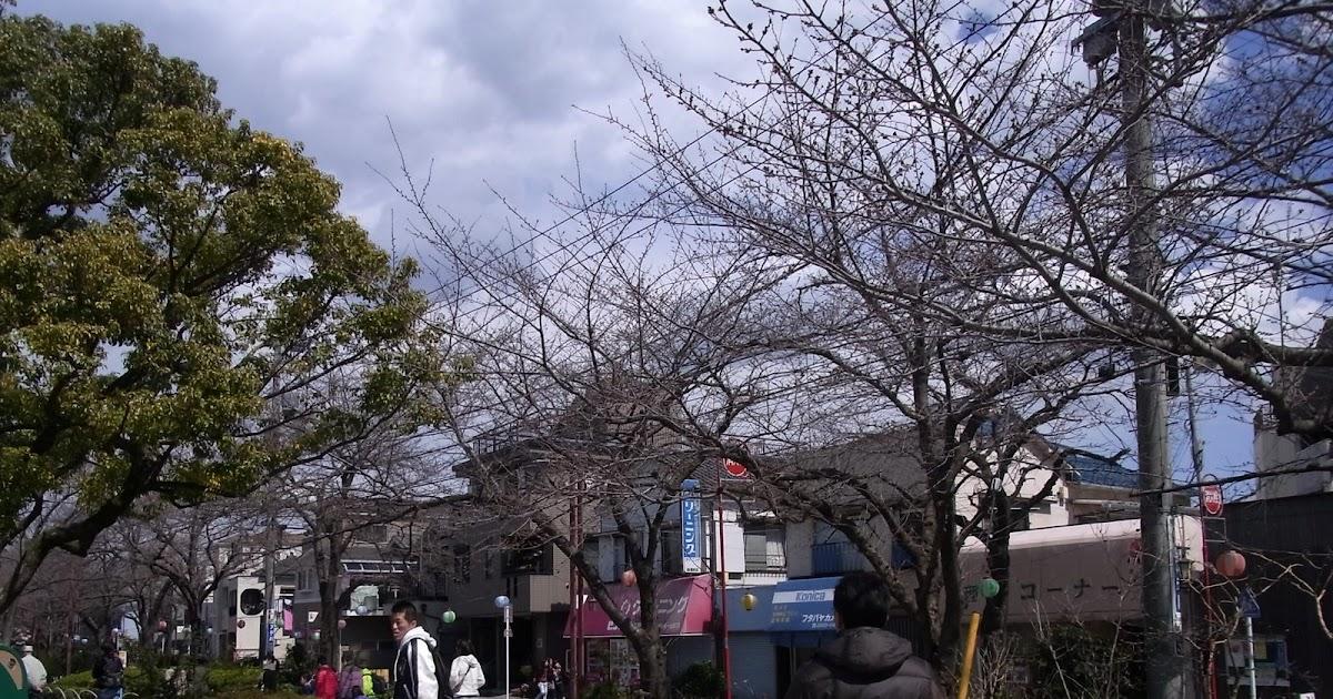 Japan: Arakawa Yuen
