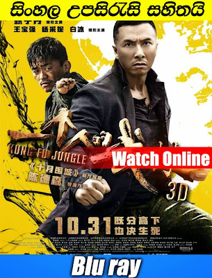 Kung Fu Jungle 2014 Watch online with sinhala subtitle