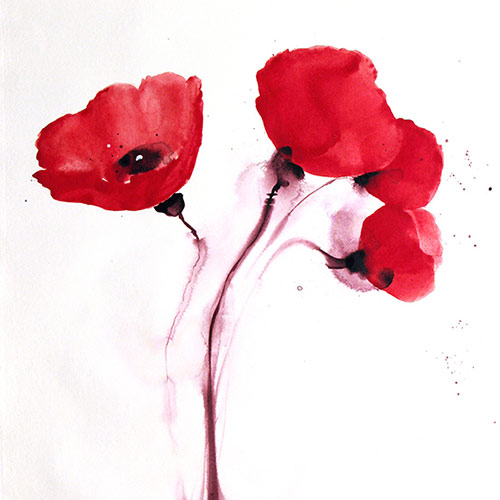 Visual poetry a blog by joanne poore poppies