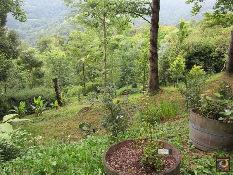 paisajes para descubrir jard n bot nico iturraran en aia