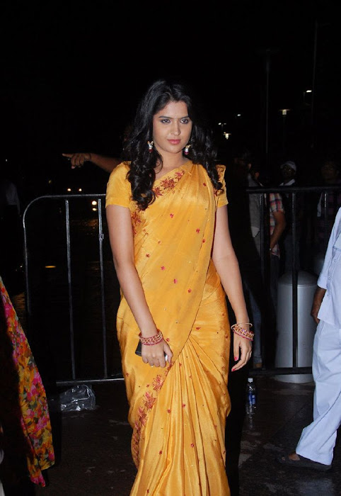 deeksha seth in saree hot photoshoot