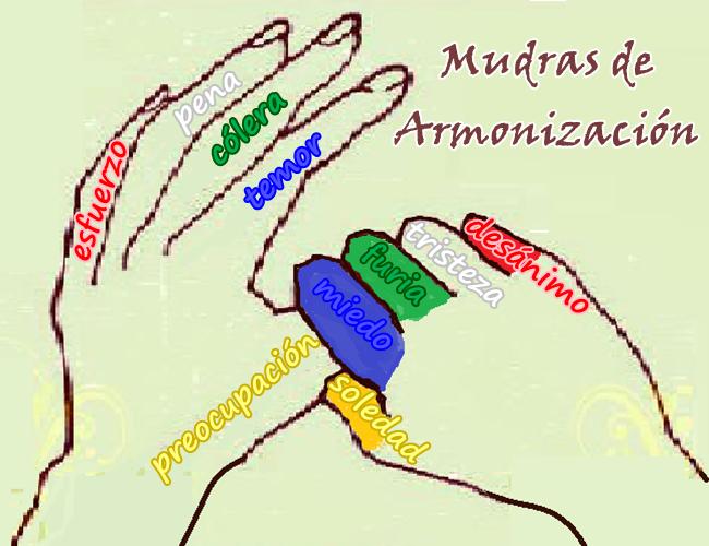 Se pueden considerar a los Mudras como afirmaciones corporales que, con la atención e intención debidas, pueden servir para armonizar.