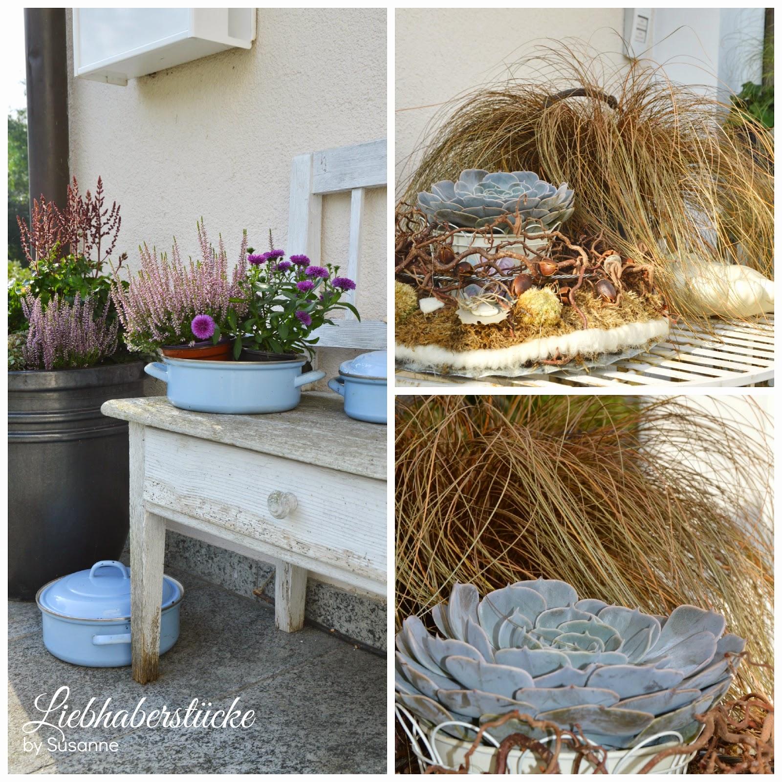 Auch typische Herbstpflanzen, wie Heidekraut und Astern sind mit von ...
