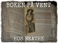 http://beathesbokhylle.blogspot.no/2014/05/boken-pa-vent-papirbyer-av-john-green.html