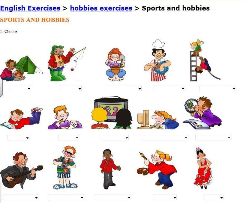 hobbies leisure and hobby