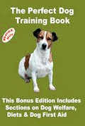 How To Train Your Dog  To Be Well Behaved
