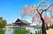 Gyeonghoeru Pavilion ที่พระราชวังคยองบก เปิดให้เข้าชม