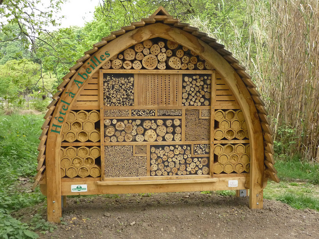 Solitary Bee Hotel