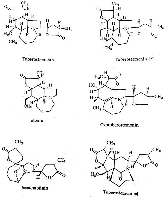 tuberostemonin