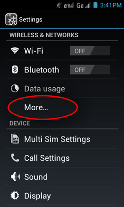 Wifi, Bluetooth and Data Usage. Tap More under the Data Usage