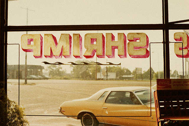 Photo de William Eggleston