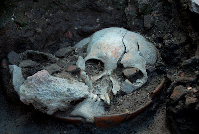 500-year old sull of decapitated individual found in Mexico