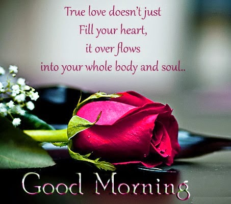 Flowers Morning love Flowers quotes
