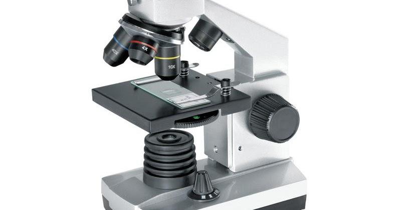 Laporan mikroskop hug your dreams ikhtiyar do a tawakkal