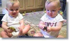 videos com bebês