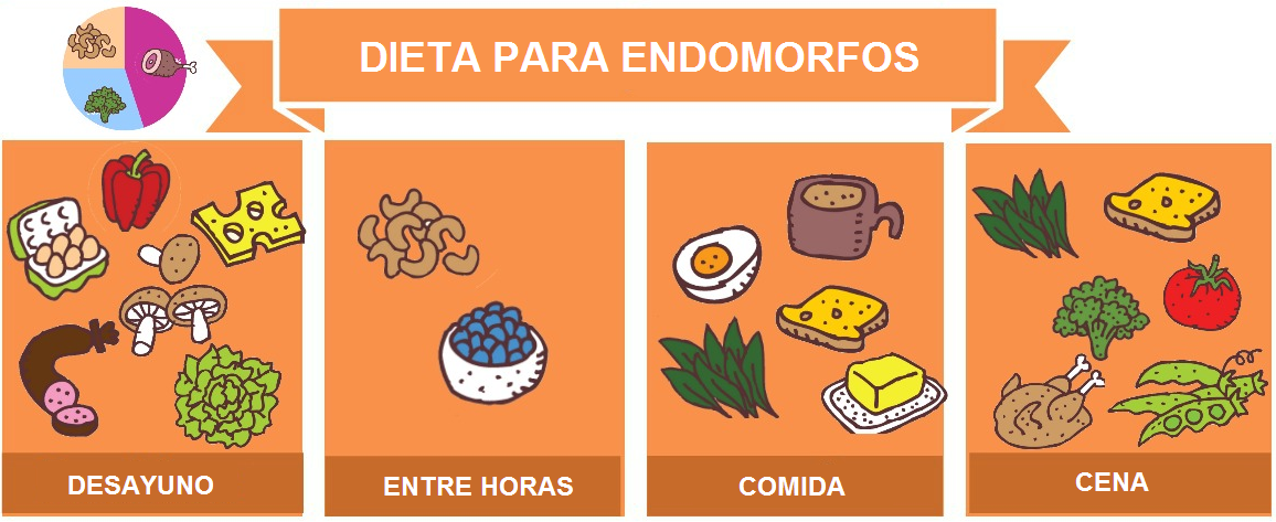 Dieta endomorfo adelgazar todo dietas secretos para un - Dieta comiendo de todo ...