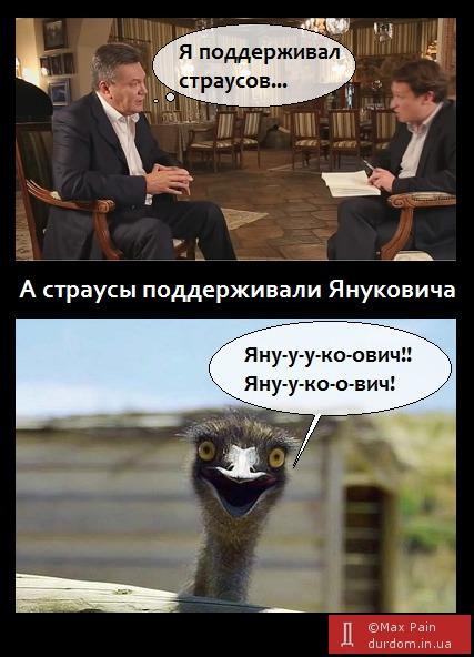 Интернет отреагировал на последнее интервью Виктора Януковича. Особенно на его признание, что в Межигорье он поддерживал страусов.