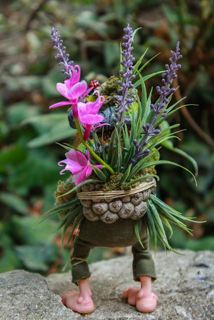 grass pixie wood sprite fantasy creature