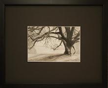 """""""LMR Tree"""""""
