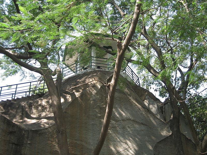 Bugle rock park basavanagudi in bangalore dating 5