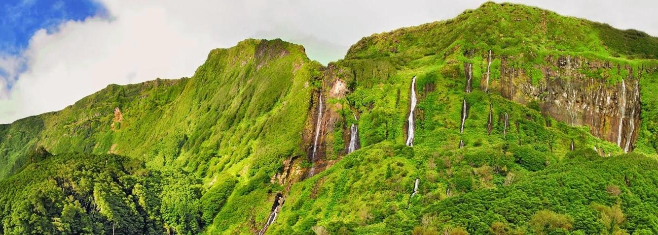 Sei que sou suspeito mas recomendo vivamente este artigo do Expresso sobre a maravilhosa ilha das Flores:  http://downloads.expresso.pt/expressoonline/infografias/flores/index.html