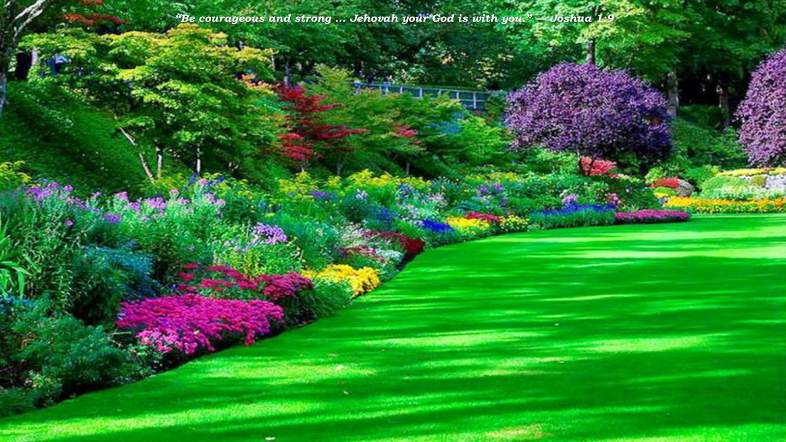 beautiful park wallpapers | Nice Pics Gallery