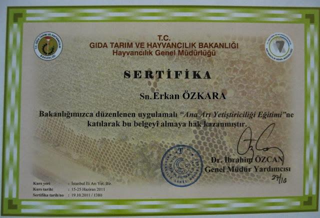 Erkan küre dağları milli parkı kestane bali küre bal 1995