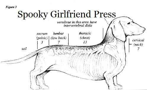 Spooky Girlfriend Press