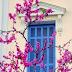 Στην Αθήνα την άνοιξη
