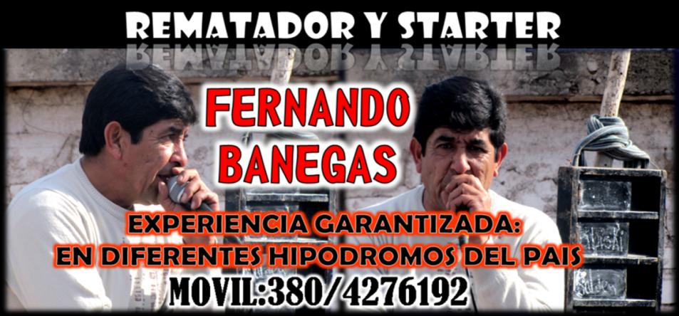 FERNANDO BANEGAS