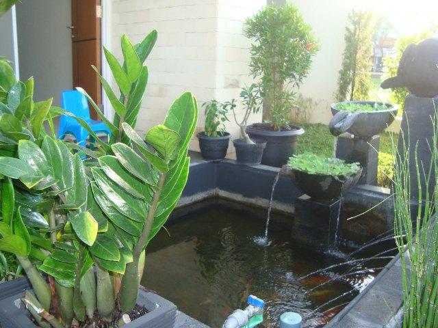 Download image Beberapa Inspirasi Foto Taman Rumah Tinggal Yang Ada ...