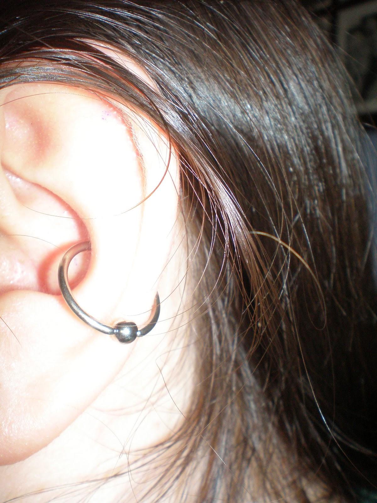 Conch Ear Piercings - Viewing Gallery Ear Piercing Jewelry