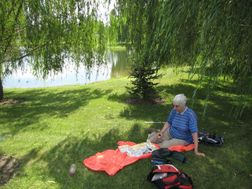 lunch by a pond