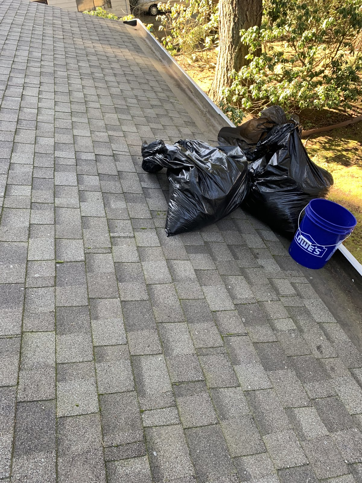 Gutter Cleaning & Roof Cleaning