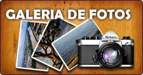 MINHAS FOTOS - Veja