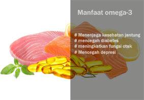 manfaat dan fungsi omega-3