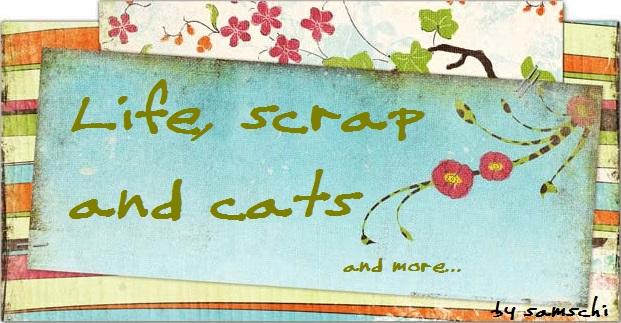 Life, scrap and cats